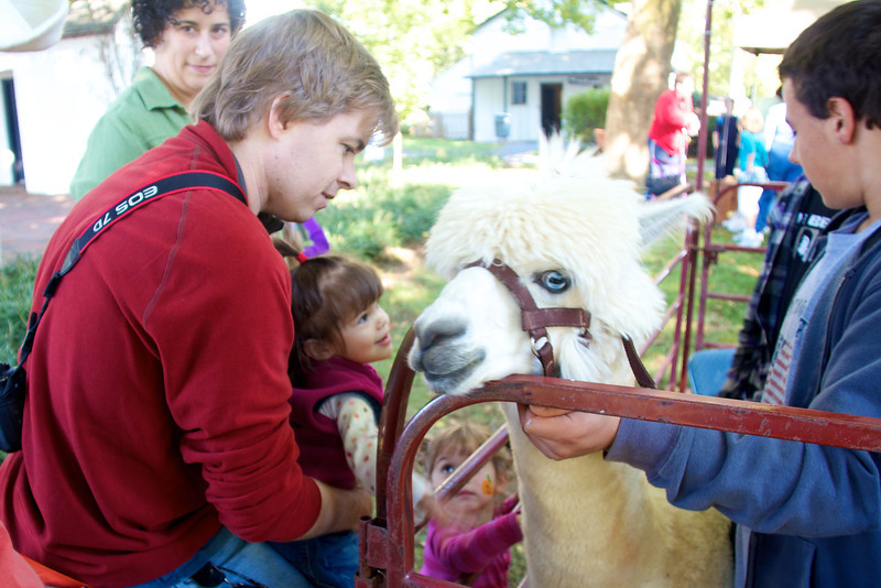 And then there was Alpaca petting