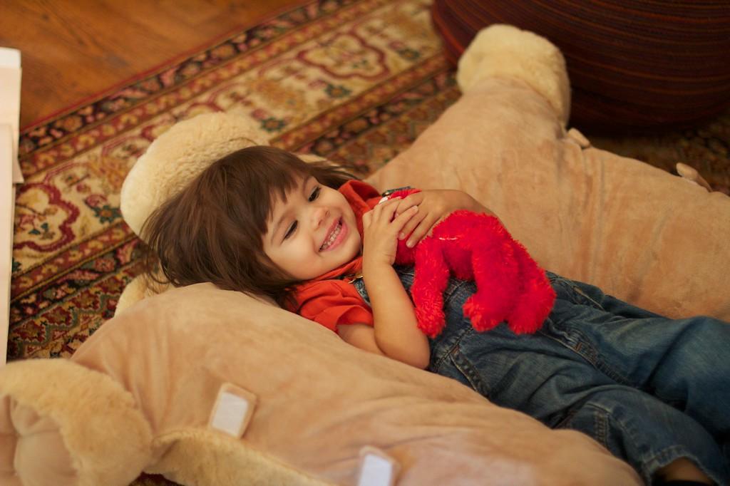 Aoife enjoys the new doggie hugging blanket