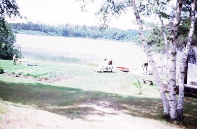 01 kurko Summer_1963___1967