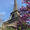 Eiffel Tower by Isabel