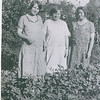 Mertyl, Ethel,   ?  (two are pregnant)  - 1936??