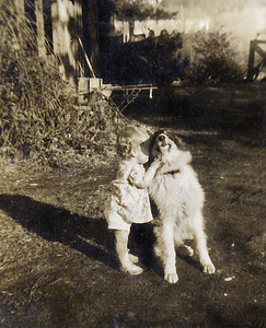 24. Butch, Chuck Johnson's collie, and a toddler for whom Ina Mae Weast Johnson-Hosier babysat c.1950 at Lake Armstrong, near Arlington, WA