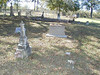 """For information on the Charles F Austin Cemetery click on the following link :  <a href=""""http://www.austintxgensoc.org/cemeteries/charlesfaustin.html"""">http://www.austintxgensoc.org/cemeteries/charlesfaustin.html</a>"""