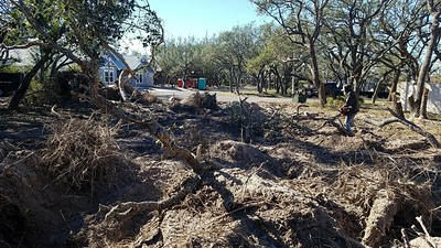Pulling up stumps brings up a lot of roots. What a mess. He had to leave and will come back next week to finish. 12 Jan 2018.