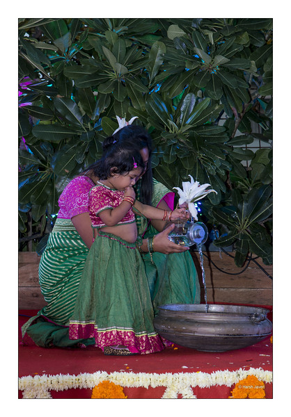 Sunflower Diwali