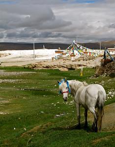 Western Tibet, 2010