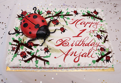 That my cake!!! Big lady bug!!!