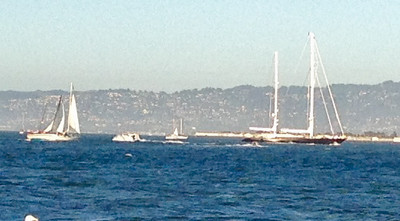 The black boat was pointed out to us as being Larry Ellison's.   I wonder if it was.