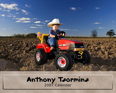 Anthony Tractor Cover
