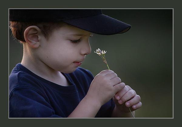 Anthony enjoying a spring flower.