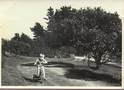 Up the driveway at the Farm, Hexton, Gisborne.  Mid 1960s and getting some pre Olympic Games training!  The Feijoa tree down at the bottom of the drive where it meets the road is still visible on Google Street View in 2013! (this photo is circa mid 1960s - I was born 1962, so around 1965?)  (67 Somerton Road, Hexton, Gisborne)