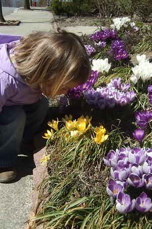 Flower inspection.