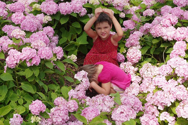 Guen and Anya are little flowers.