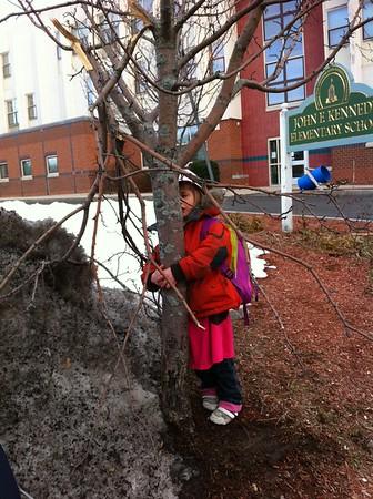 Anya is sad for the broken tree.