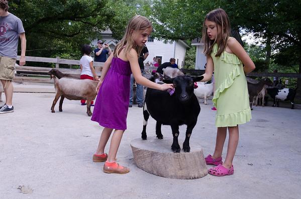 Goat on a pedistal.