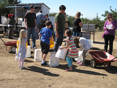 Apple Picking at Gizdich Ranch
