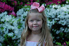 We went to the Azalea Trails to look at the beautiful flowers and take some pictures.