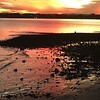 Woody Point Sunset 11/06/16