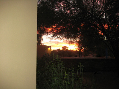 Arizona Nov, 2008 7-15
