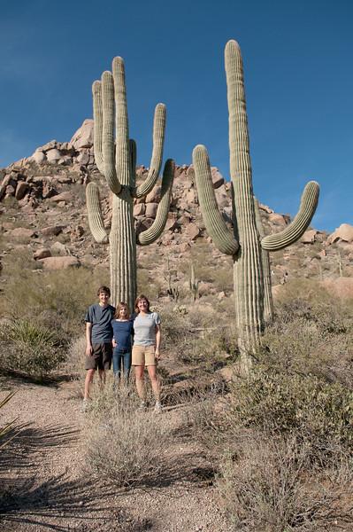 Desert-20110117102729_8880