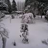 [12/22] Front Garden