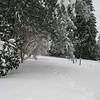 [12/22] Our Driveway