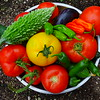Garden veg