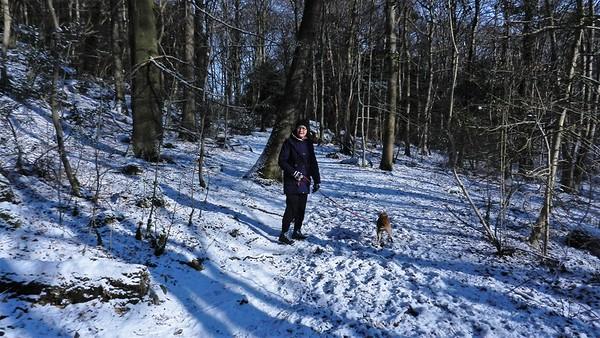 Hyning Wood 2018/02/27