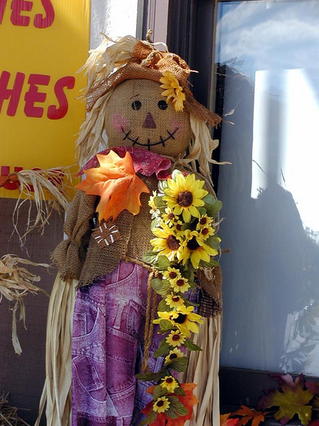 Loved this cheery scarecrow outside her shop. This shop is my favorite place to get a cup of coffee and to visit a little.