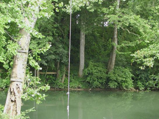 Rope Swing Near Our House at the  Swimming Hole