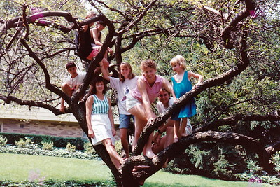 1989 cousin tree