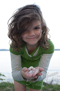 seashells :)