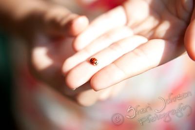 she found a ladybug!