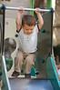 Swing monkey Swing!