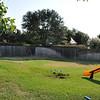 Backyard before the pool