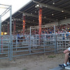 Watching the rodeo at the Fair.