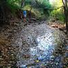 Max Behind Stagnant Creek Water