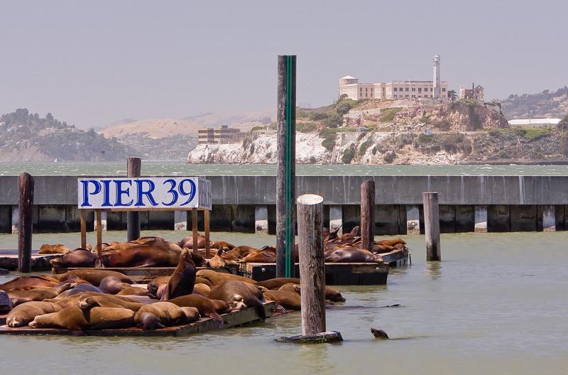 Alcatraz Island seen from Pier 39