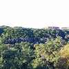 Zilker park and Barton Springs in Austin from the Tree House.