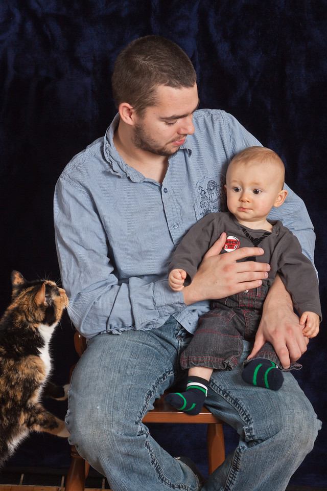 Bronson, Austin & Stupid Cat