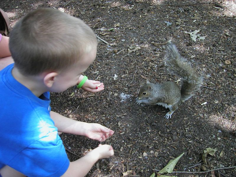 Deric feeding a hungry squirrel...they took the peanut right out of their hands.