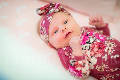 Baby Avery-14