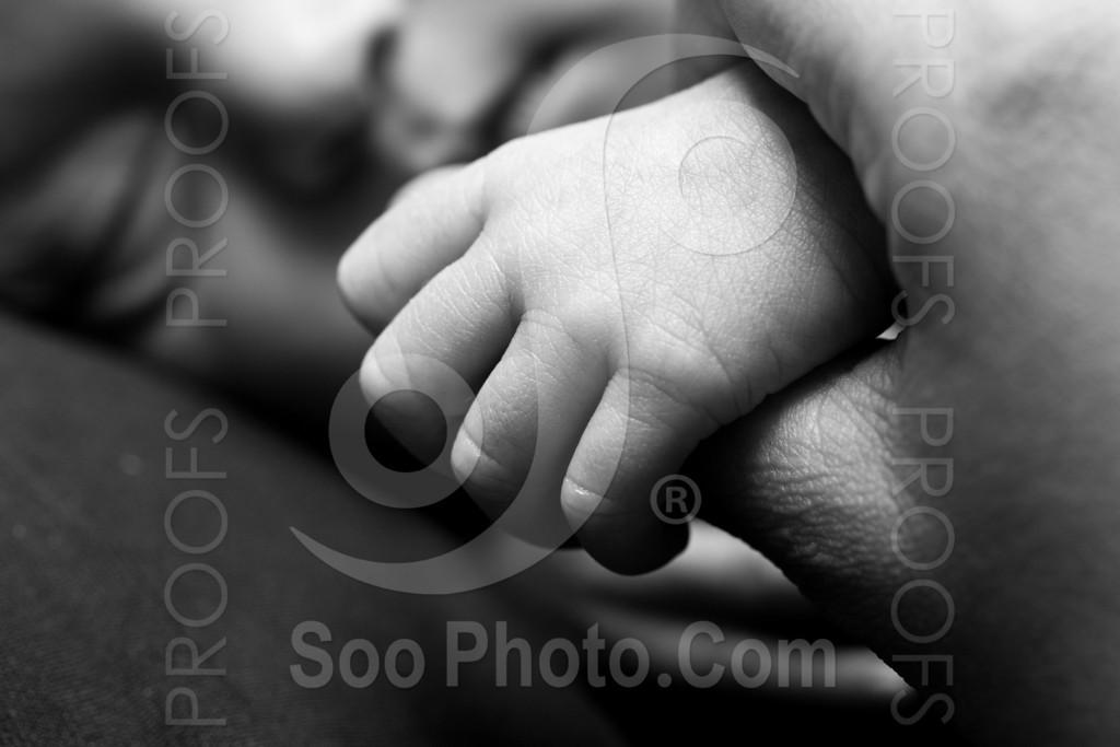 baby-chakravarty-4206