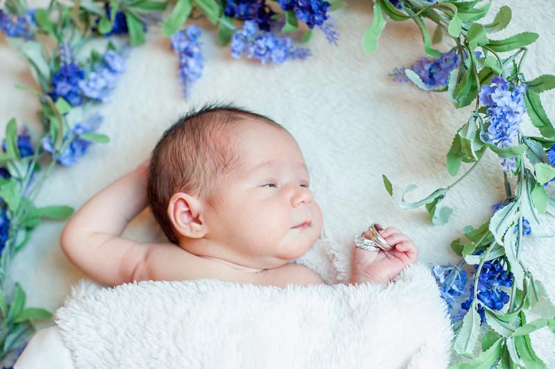Claire newborn photos-14
