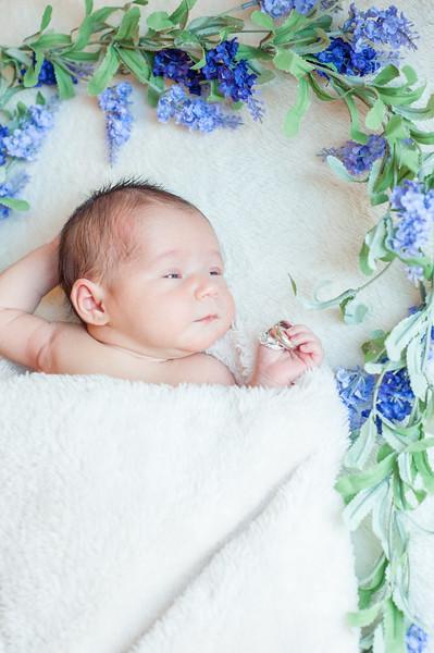 Claire newborn photos-15