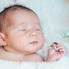 Claire newborn photos-16