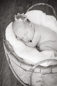 18_KLK_Baby_Penelopea4TT