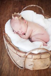 18_KLK_Baby_Penelopea2T