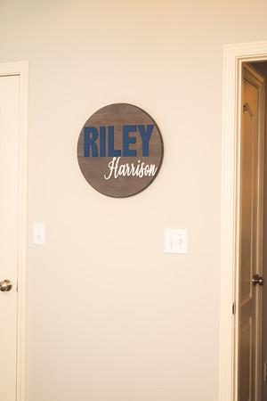Riley -6