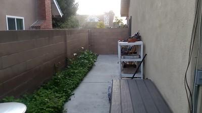 Backyard Giveaway